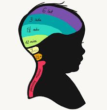 IV kwartał rozwoju czyli rozwój dziecka miedzy 10 a 12 m.ż